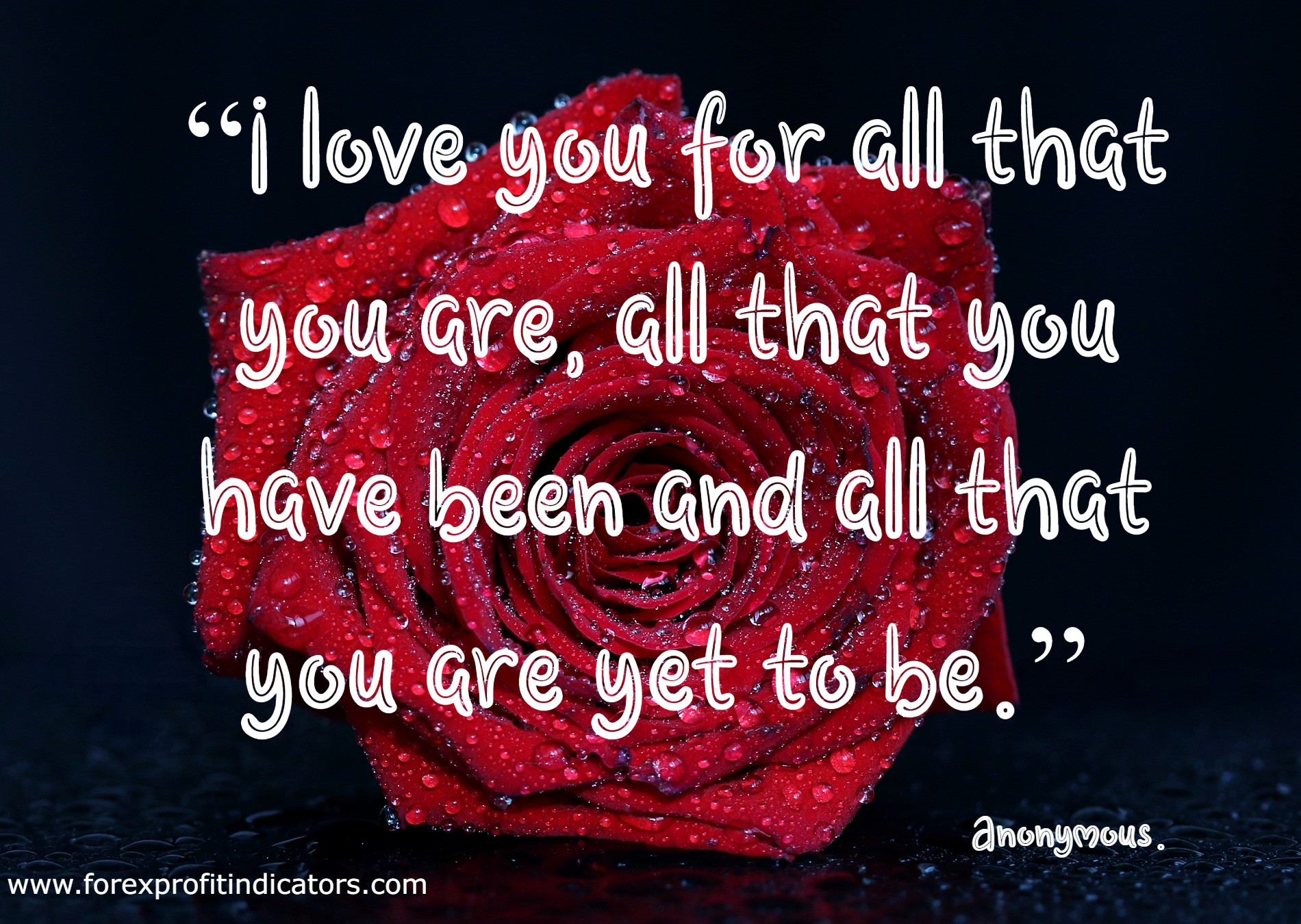 Valentine's Day Quotes For Her-15